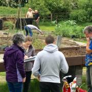 Garden Ballinfoile Group June 19